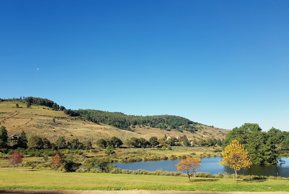 TOP ESTATE IN DULLSTROOM