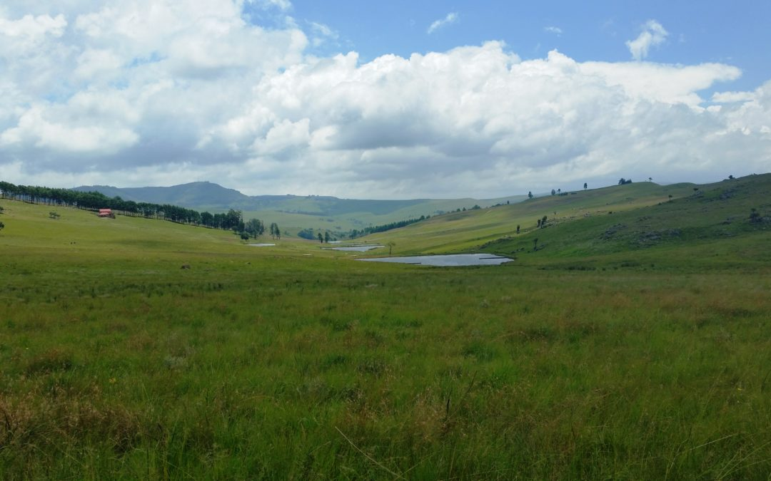 Dullstroom Country Estate