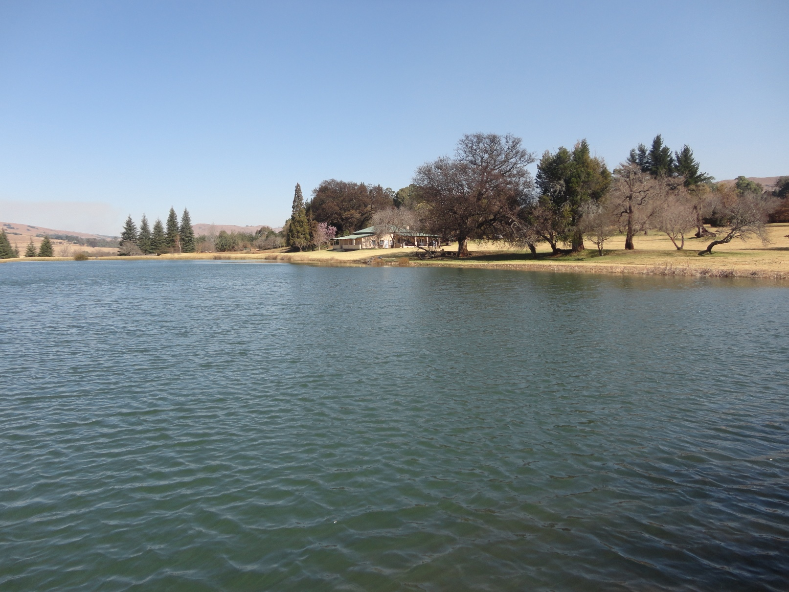 ZF318_Share_In_A_Farm_Dullstroom__110_