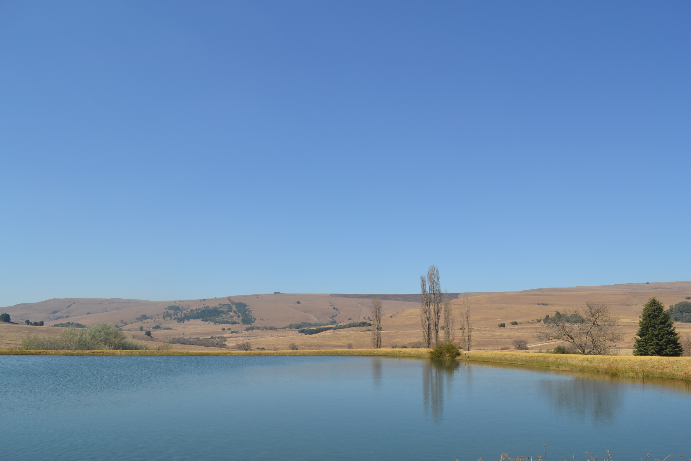 ZF318_Share_In_A_Farm_Dullstroom__22_