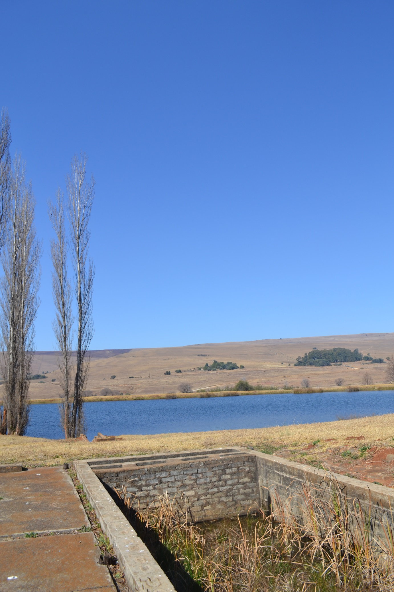 ZF318_Share_In_A_Farm_Dullstroom__41_