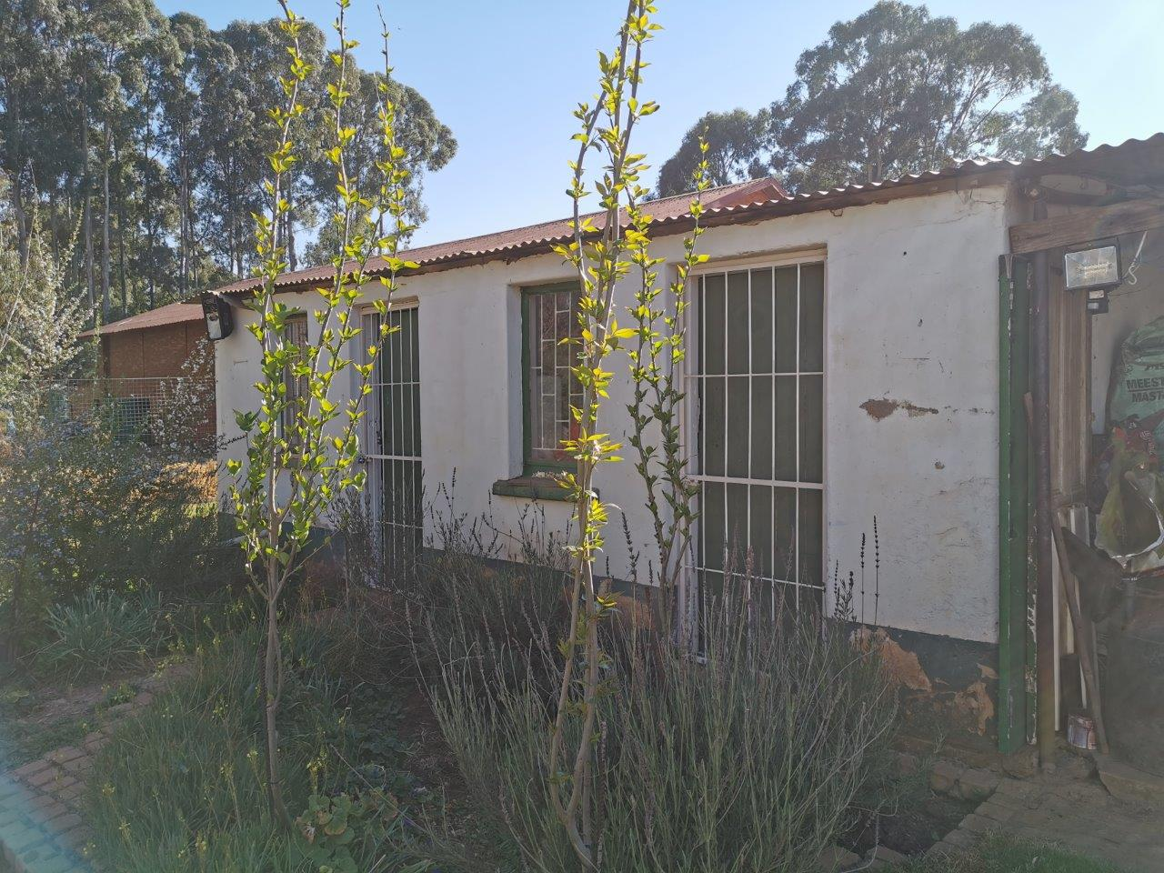 ZH421_-_House_In_Dullstroom__24_