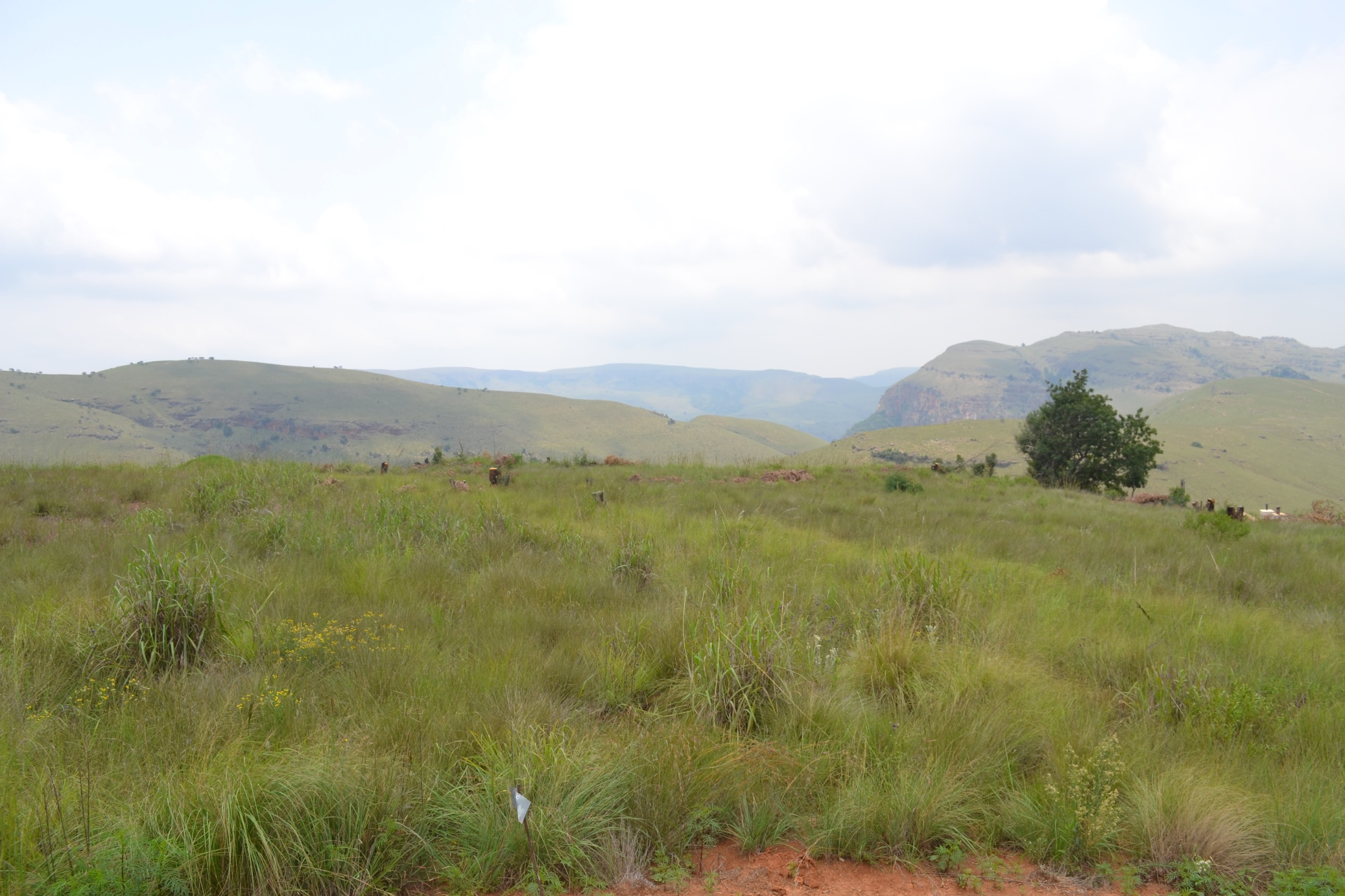 ZHG118-Highland-Gate-Vacant-Stand-Dullstroom__3_