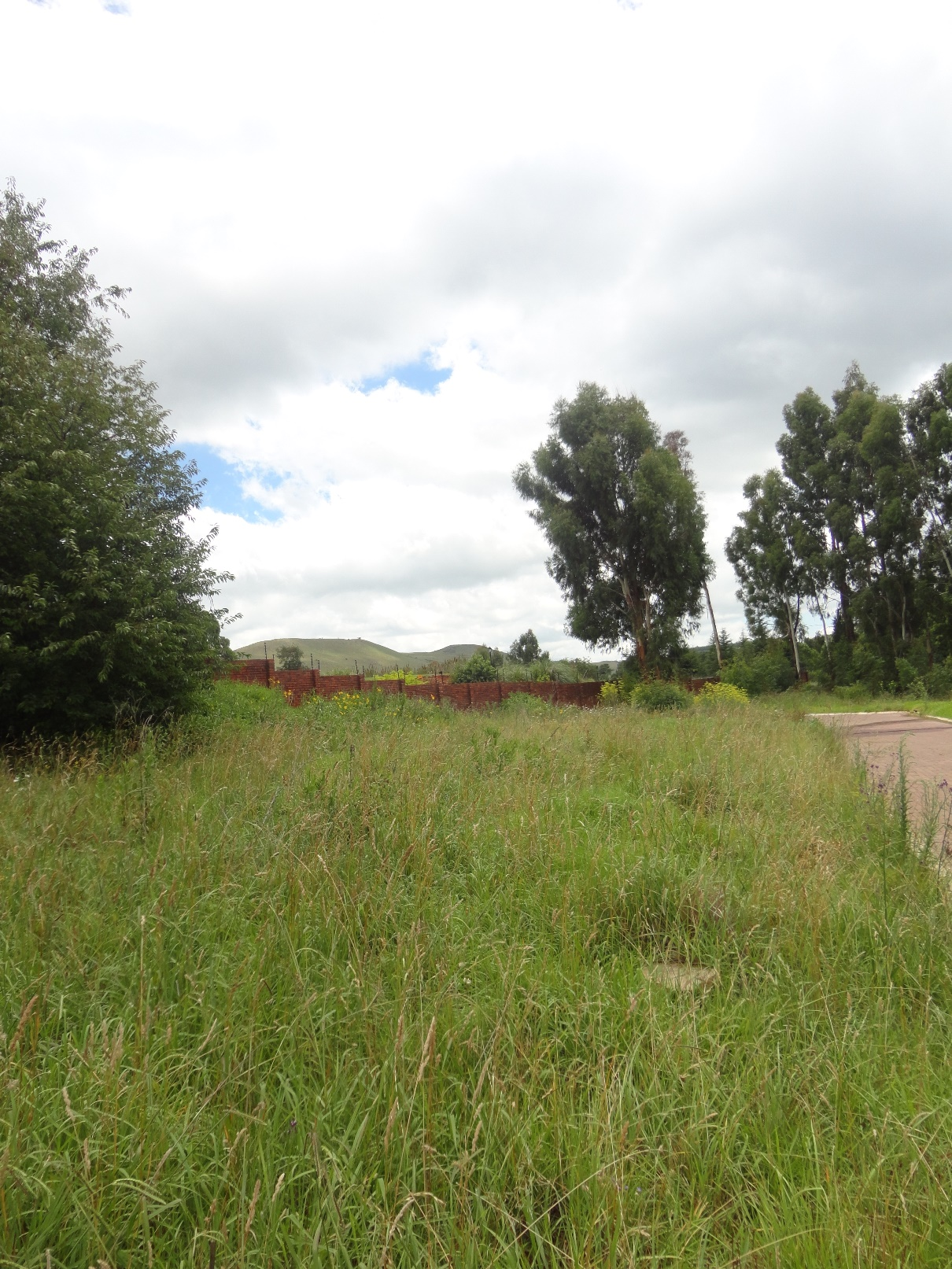 ZS205_-_Stand_for_Sale_in_Dullstroom__4_
