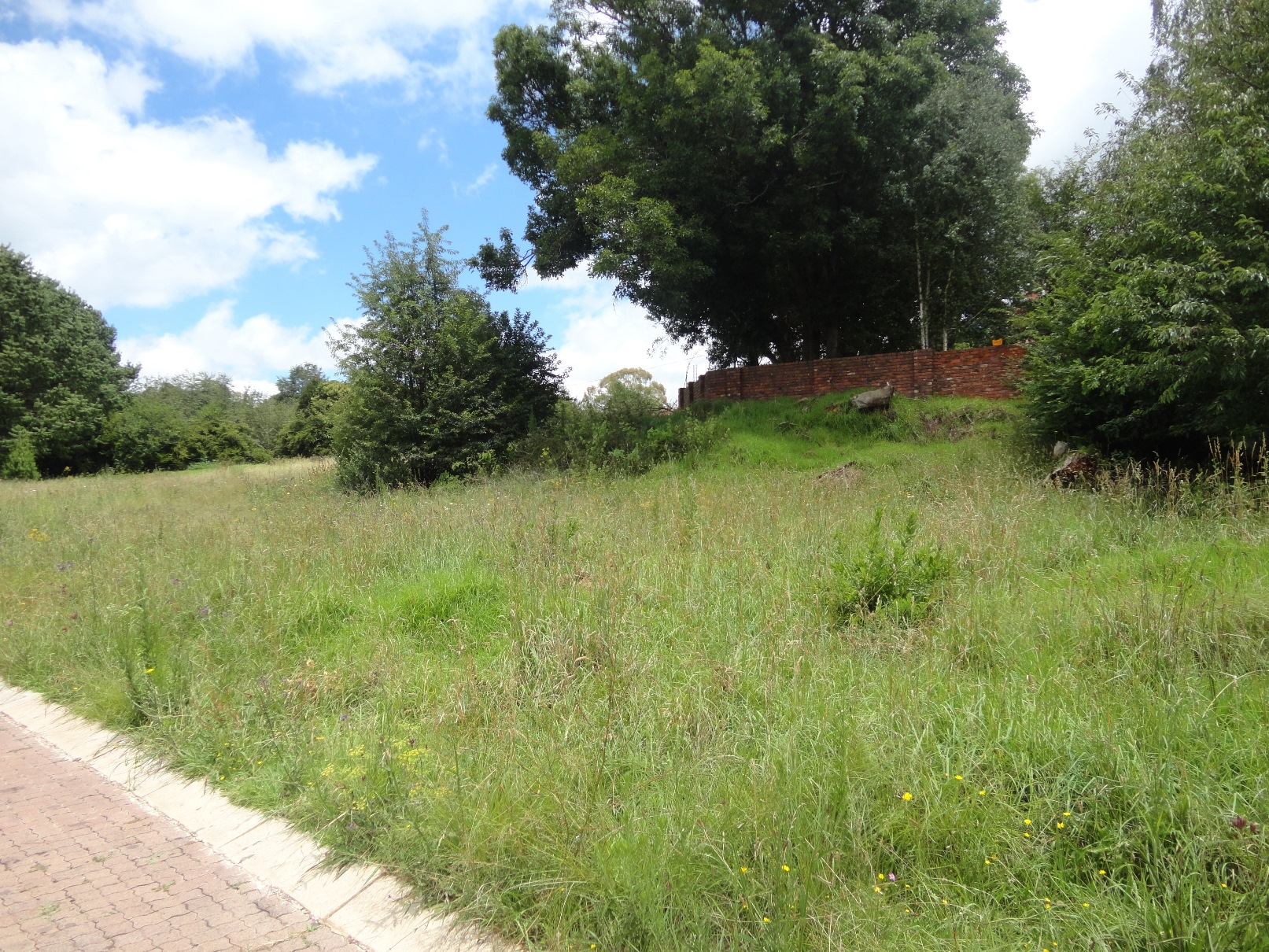 ZS205_-_Stand_for_Sale_in_Dullstroom__6_