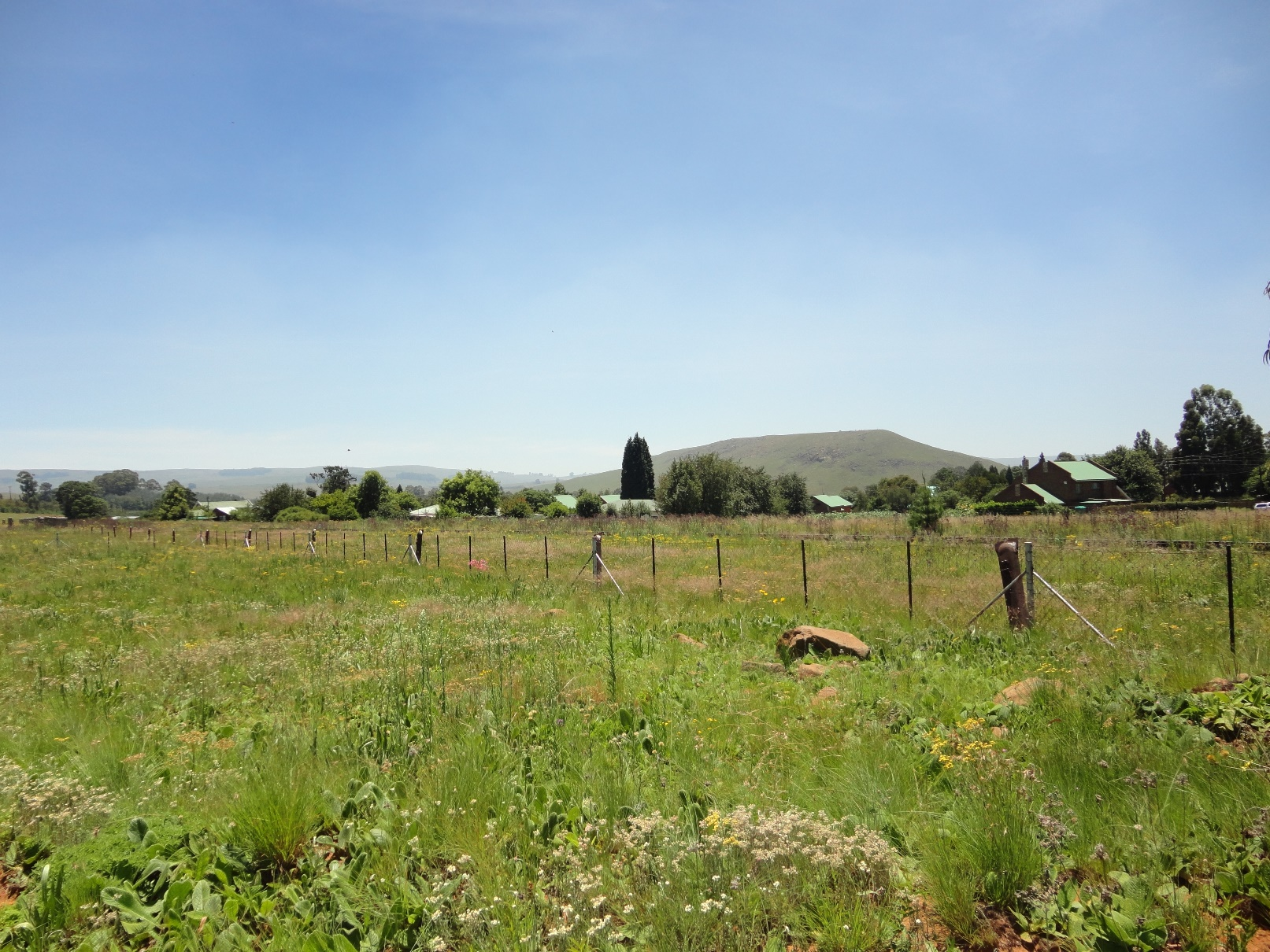 ZS208_-_Stand_In_Dullstroom_For_Sale__6_