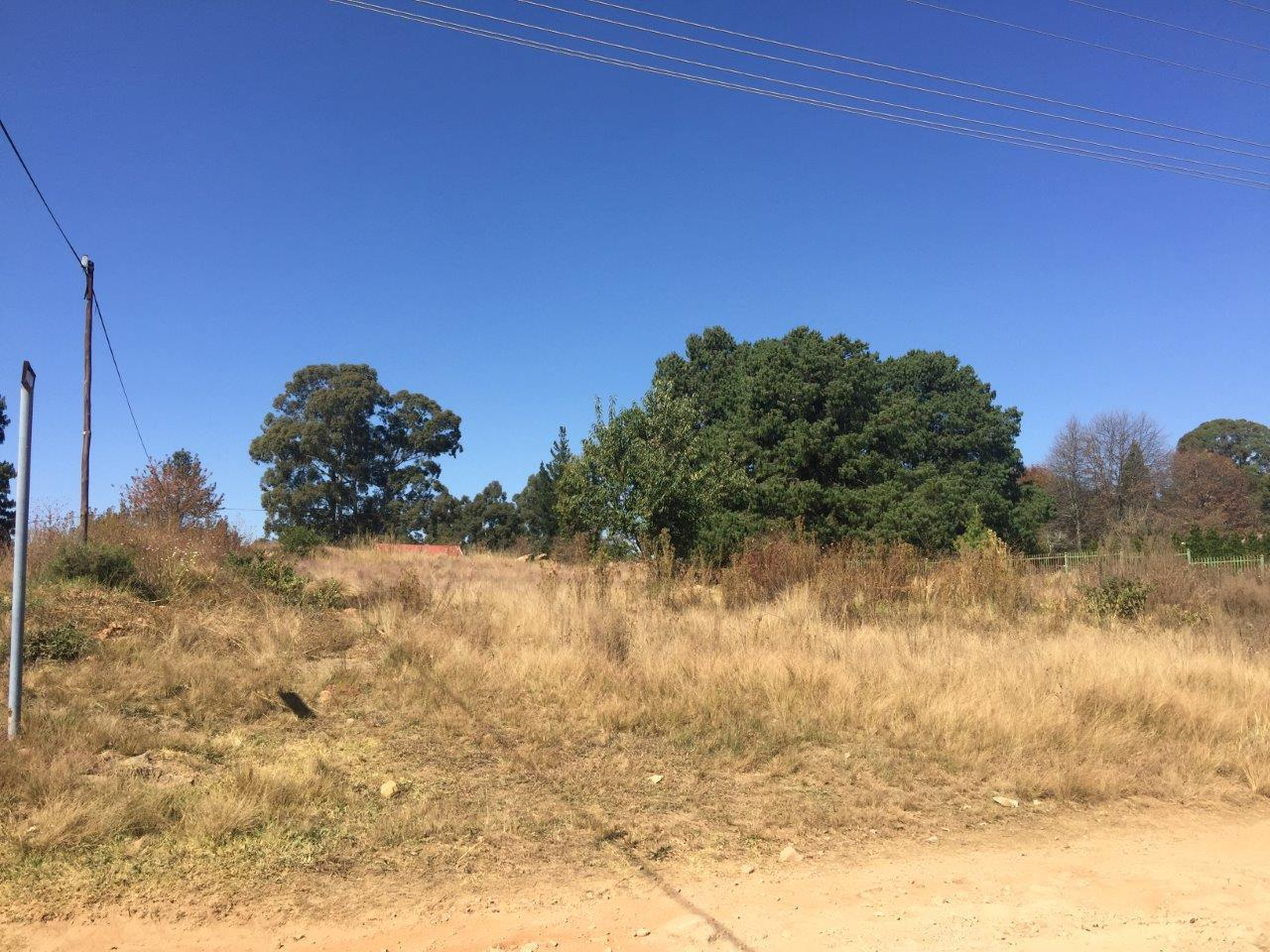 ZS211-Well-Located-Stand-Dullstroom__1_