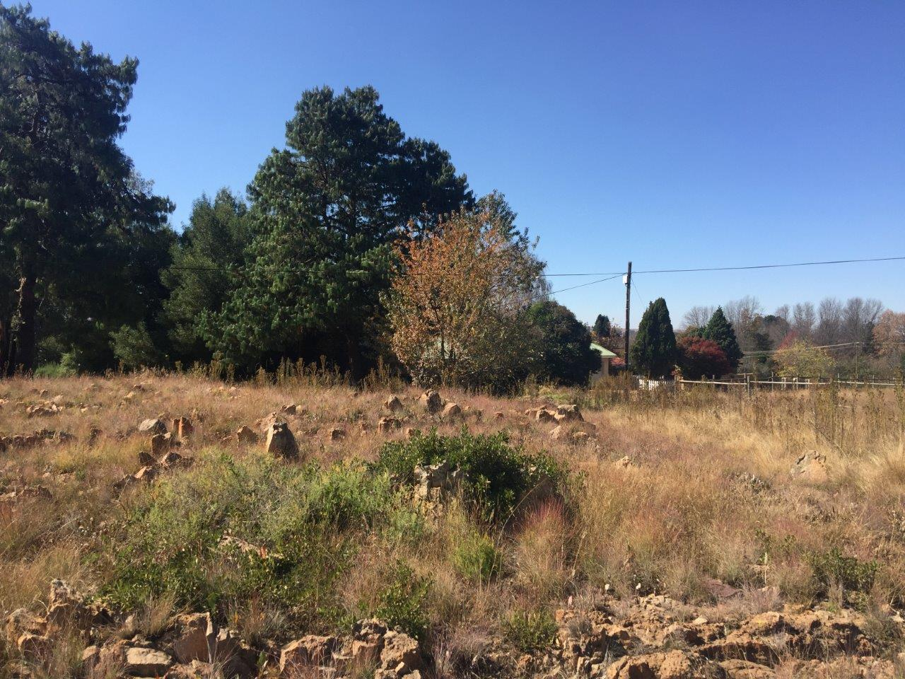 ZS211-Well-Located-Stand-Dullstroom__8_