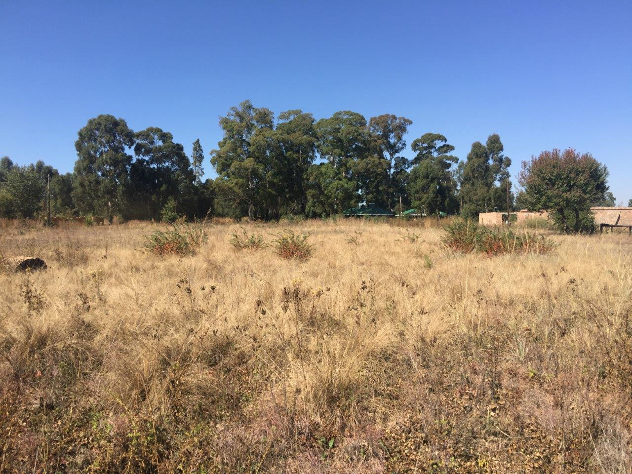 ZS212-Stand-Dullstroom-For-Sale__16_