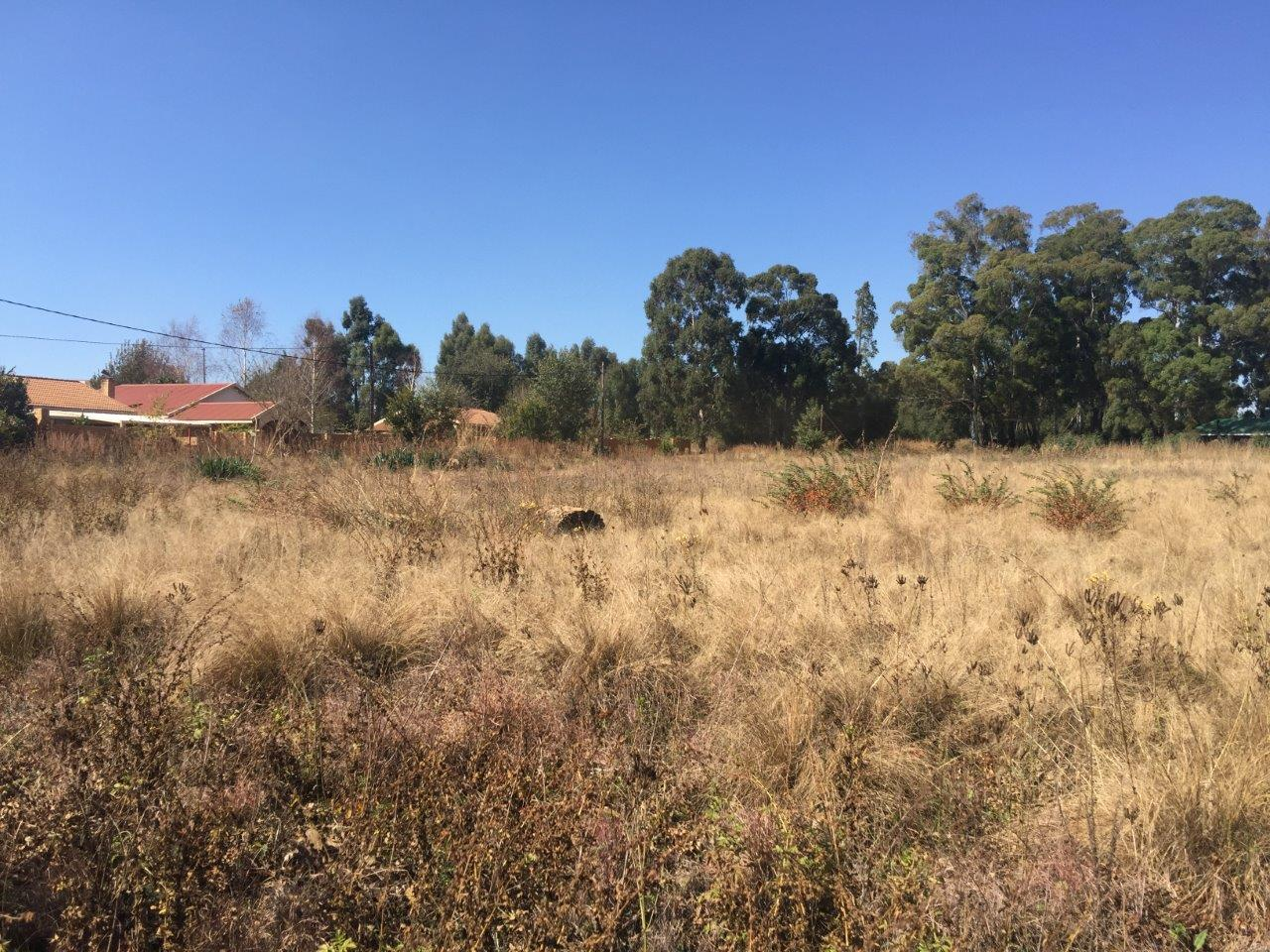 ZS212-Stand-Dullstroom-For-Sale__17_